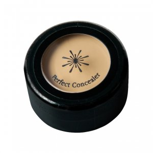 The Style Perfect Concealer (Light Beige)